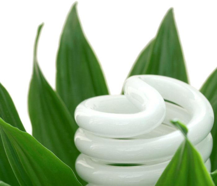 New Eco Bulbs