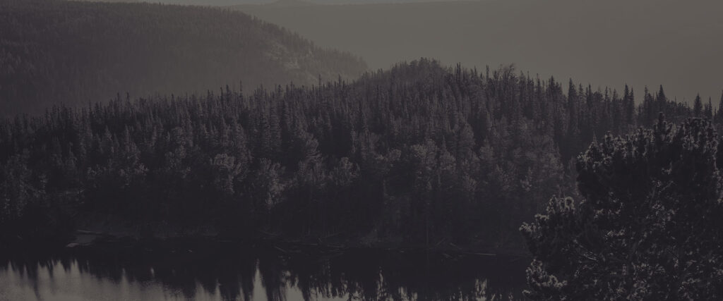 parallax-treebeard-background-9